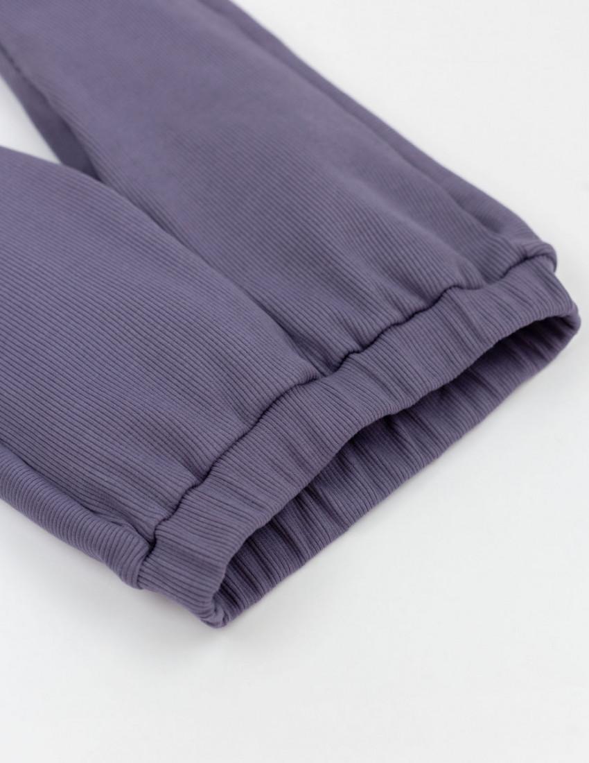 Брюки Маркус фиолетовые